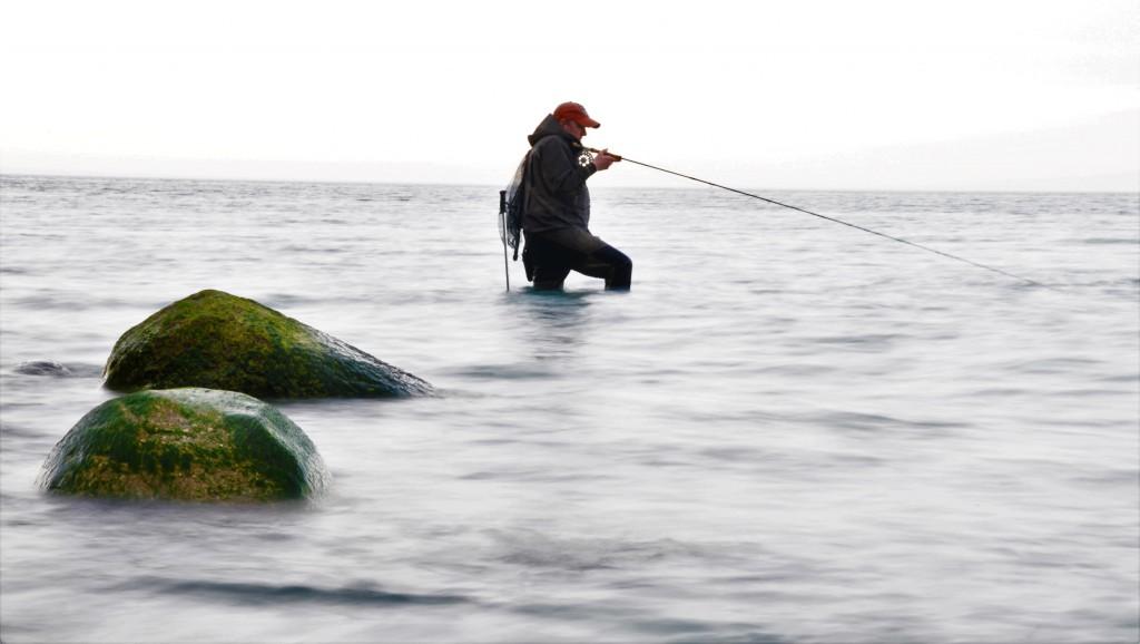 New Imagemønfiske